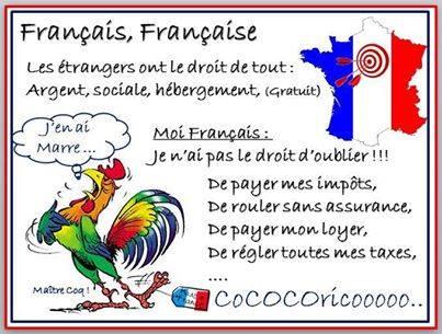 le-coq-francais-en-a-marre