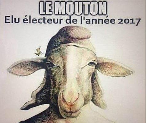 le-mouton-elu-electeur-2017.jpg