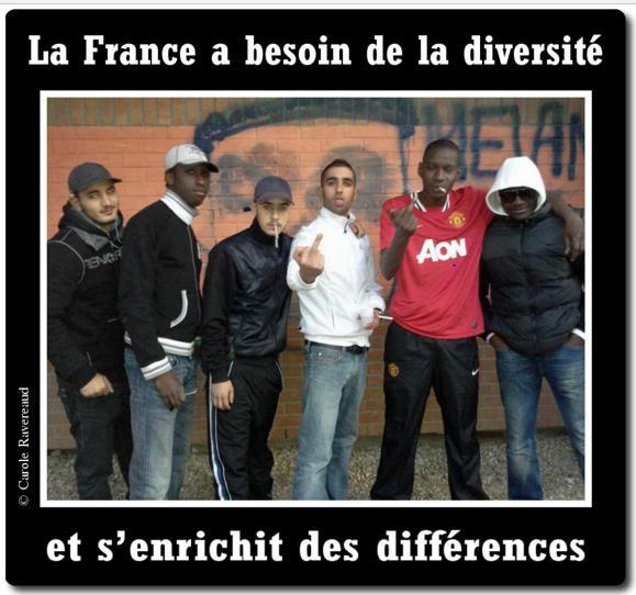 diversite-enrichisante.png